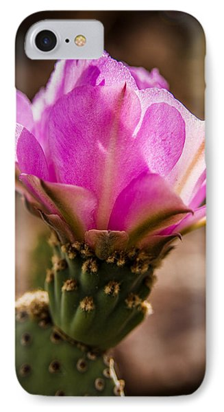 Purple Cactus Flower Phone Case by  Onyonet  Photo Studios
