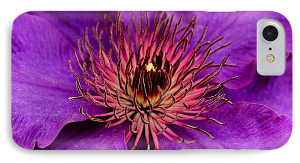 IPhone Case featuring the photograph Purple Clematis by Suzanne Stout