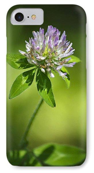 Purple Clover Flower Phone Case by Christina Rollo