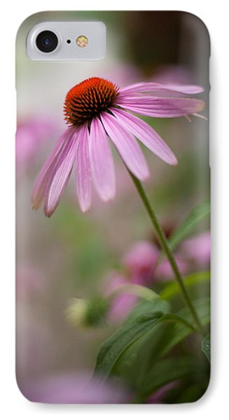 Purple Coneflower IPhone Case by April Reppucci