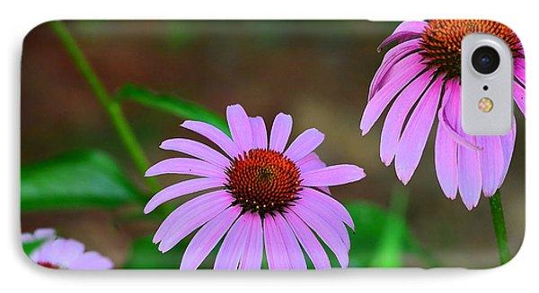 Purple Coneflower - Echinacea IPhone Case by Kathy Eickenberg