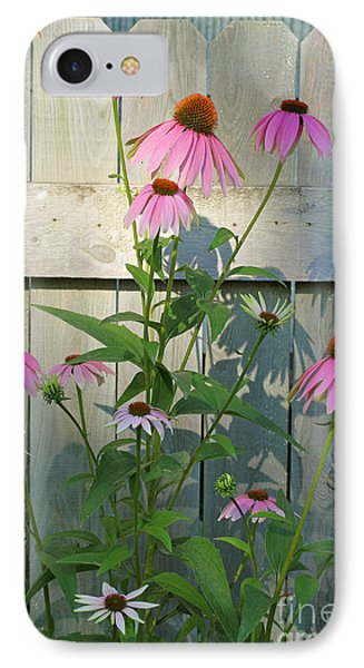 IPhone Case featuring the photograph Purple Coneflower by Steve Augustin