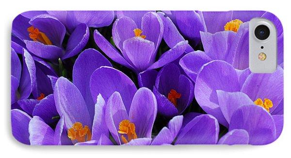 Purple Crocus Phone Case by Elena Elisseeva