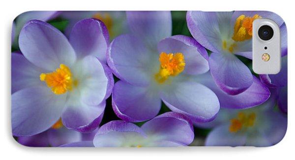 Purple Crocus Gems IPhone Case by Tikvah's Hope