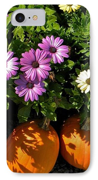Purple Daisies And A Touch Of Orange IPhone Case by Jean Goodwin Brooks