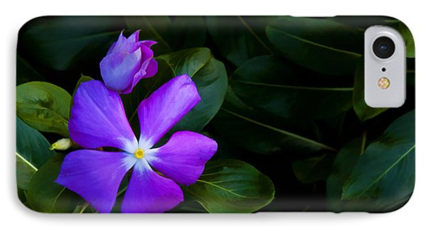 Purple IPhone Case by Don Durfee