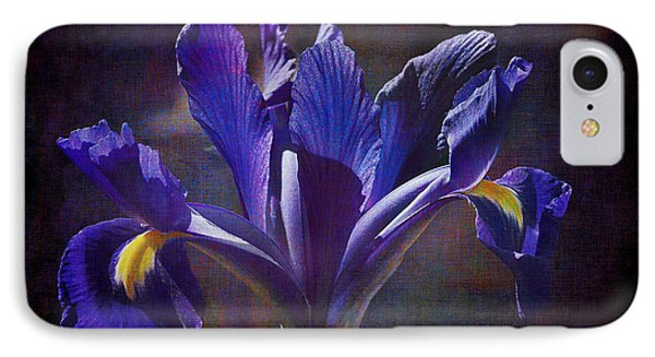 Purple Dutch Iris IPhone Case