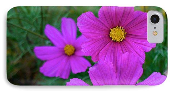 Purple Flower IPhone Case by Alex King