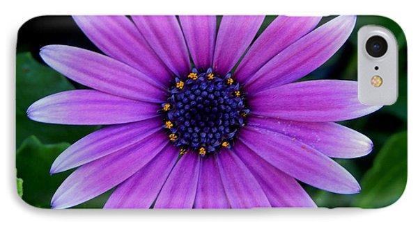 Purple Flower IPhone Case by Pamela Walton