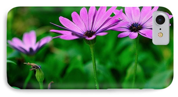 IPhone Case featuring the photograph Purple Flowers by Joe  Ng