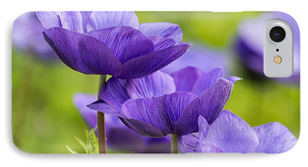 Purple Flowers IPhone Case by Jon Woodhams