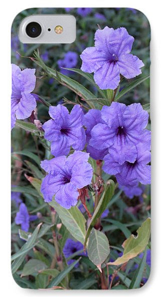 IPhone Case featuring the photograph Purple Flowers by Laurel Powell