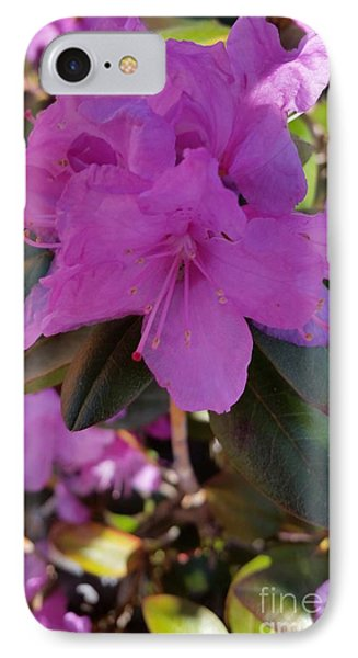 IPhone Case featuring the photograph Purple Flowers by Rose Wang