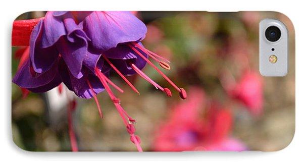 Purple Fuchsia IPhone Case