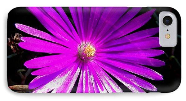 Purple Glow IPhone Case by Pamela Walton