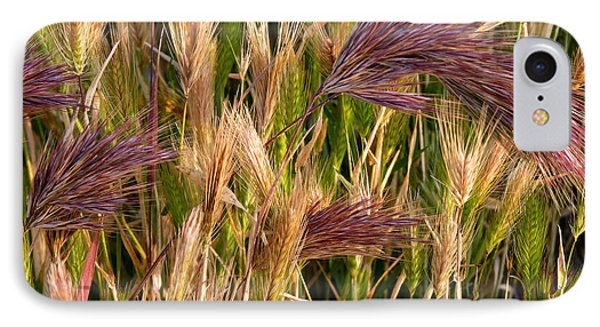 IPhone Case featuring the photograph Purple Grasses by Meghan at FireBonnet Art
