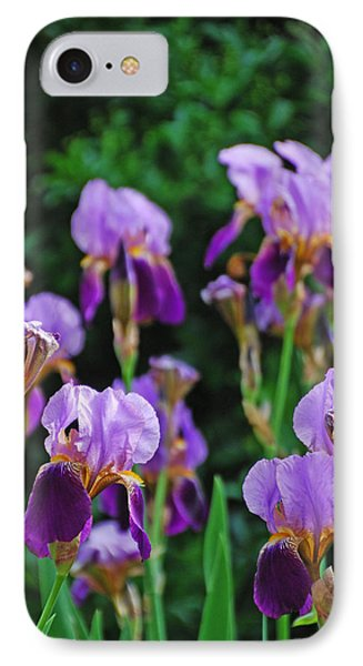 Purple Iris Bliss IPhone Case by Ankya Klay
