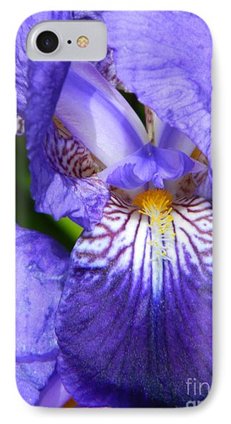 Purple Iris IPhone Case by Chalet Roome-Rigdon