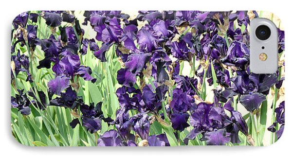 IPhone Case featuring the photograph Purple Iris by Diane Lent