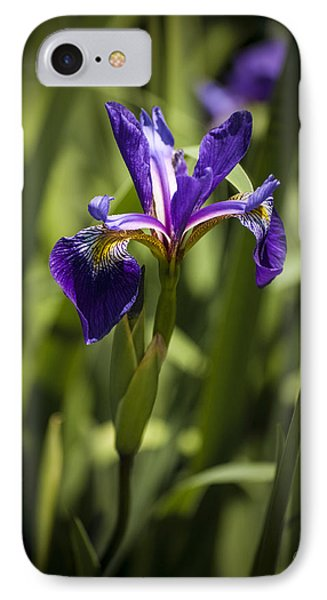 Purple Iris IPhone Case by Penny Lisowski