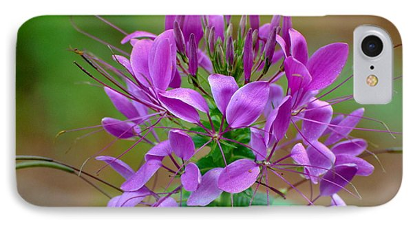 IPhone Case featuring the photograph Purple Lilly by Jodi Terracina