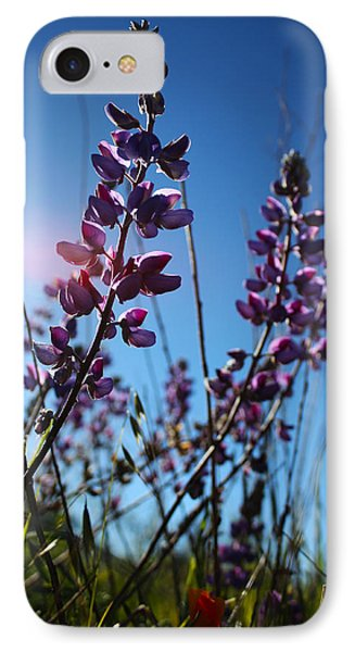 IPhone Case featuring the photograph Purple Lupine by Richard Stephen