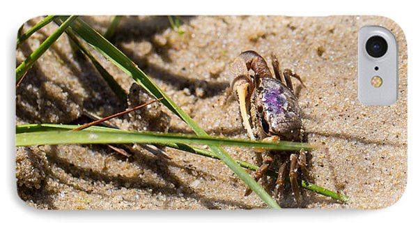 Purple Marsh Crab 3 IPhone Case