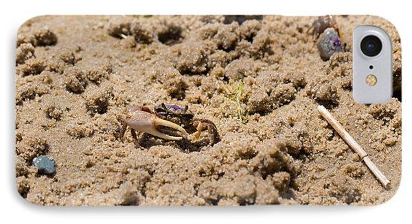 Purple Marsh Crab 6 IPhone Case