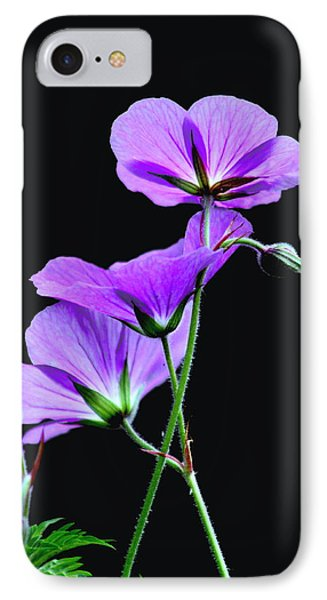Purple On Black IPhone Case by Diane Merkle