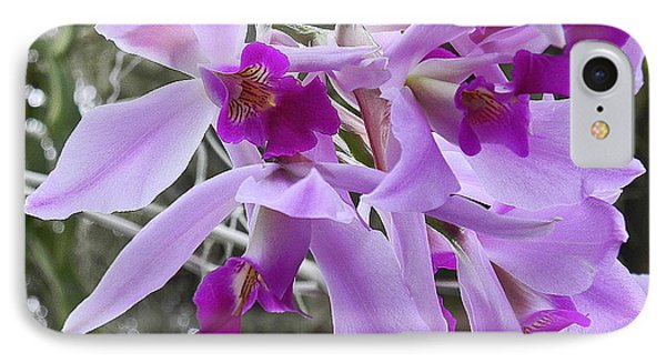 Purple Orchid Personality IPhone Case