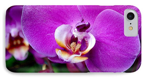 Purple Orchid IPhone 7 Case