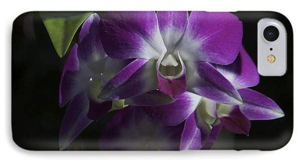Purple Orchids Front View IPhone Case by Stephen Orsillo