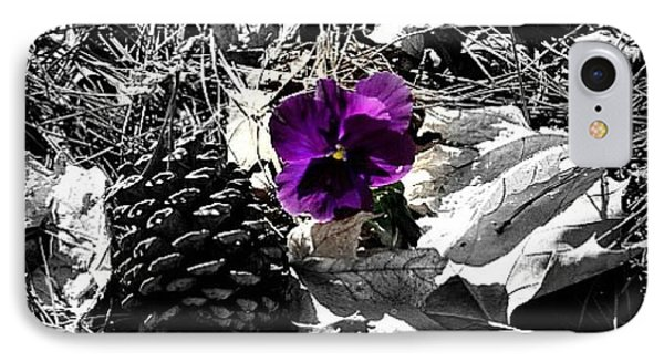IPhone Case featuring the photograph Purple Pansy by Tara Potts