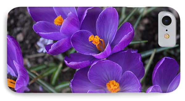 Purple Passion Phone Case by Judy Palkimas
