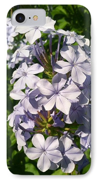 IPhone Case featuring the photograph Purple Petals by Alohi Fujimoto