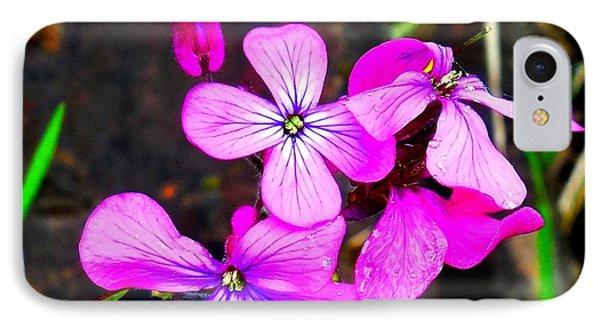 Purple Lunaria IPhone Case by Karen Molenaar Terrell