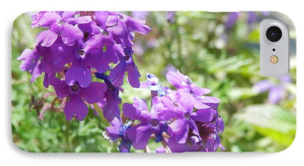 Purple Phlox IPhone Case