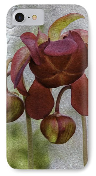 IPhone Case featuring the photograph Purple Pitcher Plant by Betty Denise