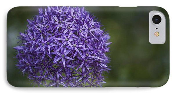 Purple Puff IPhone Case by Jacqui Boonstra