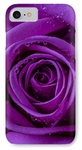 Purple Rose Close Up Phone Case by Garry Gay