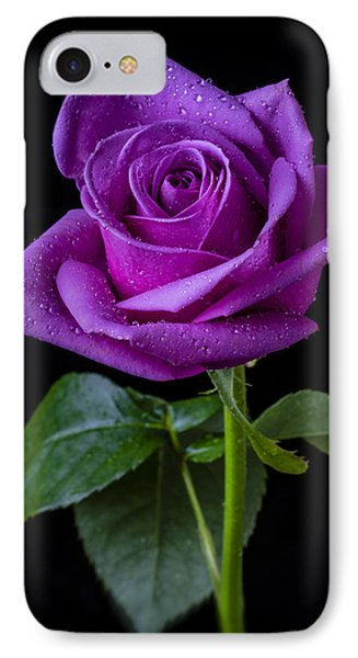 Purple Rose IPhone Case by Garry Gay