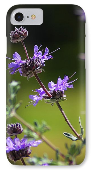 Purple Sage IPhone Case by Richard Stephen