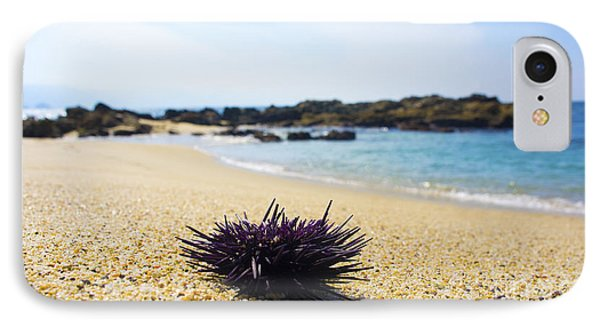 Purple Seastar IPhone Case by Aged Pixel