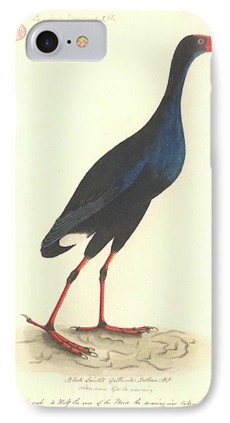 Purple Swamphen IPhone Case by Natural History Museum, London