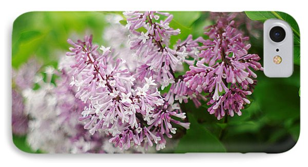IPhone Case featuring the photograph Purple Syringa Flowers by Suzanne Powers