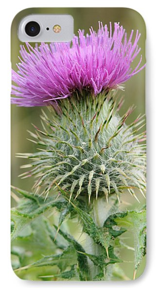 Purple Thistle IPhone Case by Jeremy Voisey