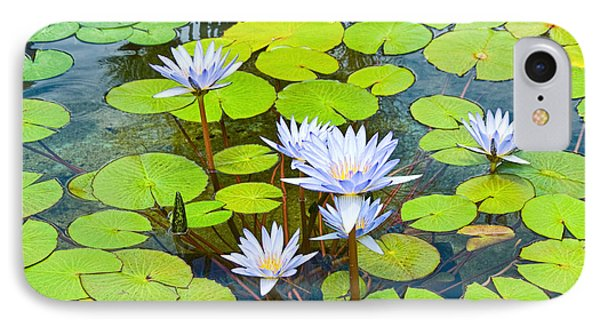 Purple Water Lilies In A Pond. IPhone Case by Jamie Pham