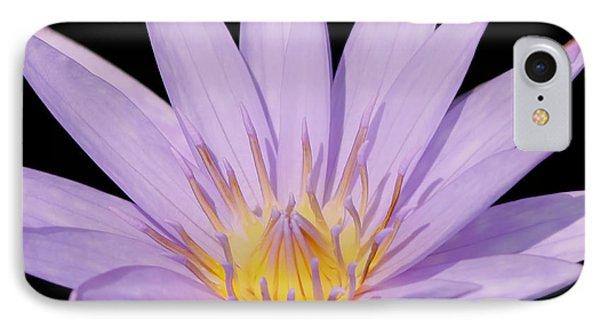 Purple Water Lily Phone Case by Kim Hojnacki