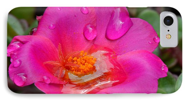 Purslane Flower In The Rain Phone Case by Sandi OReilly