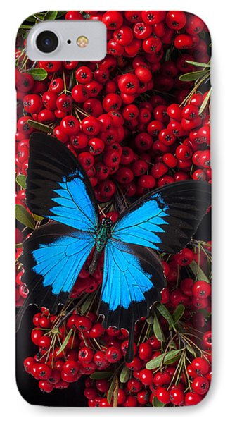 Pyracantha And Butterfly Phone Case by Garry Gay